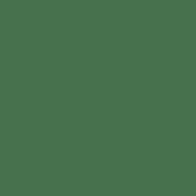Night Fever Earrings - Olive Shell